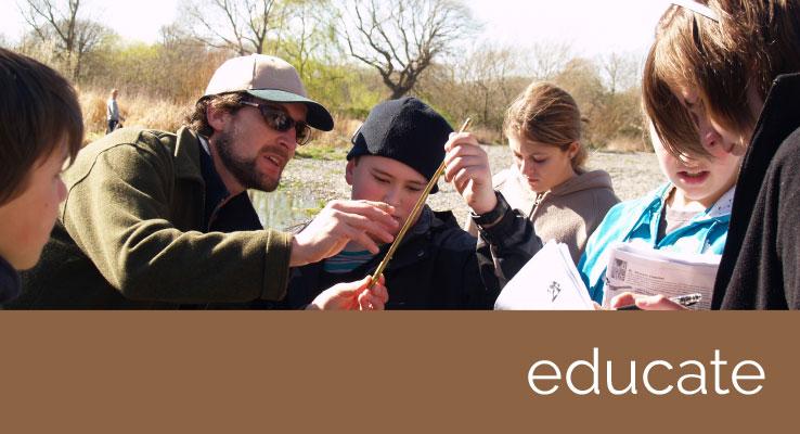 educate-ql-image