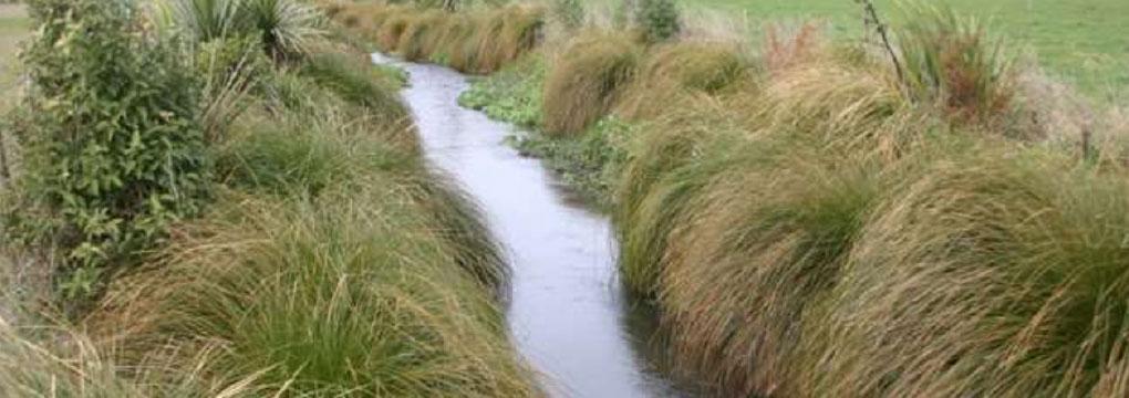 sustainable-drain-management-headimg
