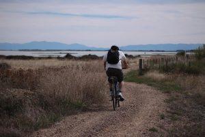 Cycylist on Rail Trail IMG_8792