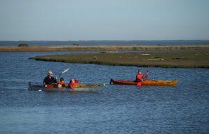 Kayakers lower selwyn river IMG_8131
